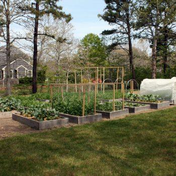 MASSACHUSETTS, USA: How the Garden Grows