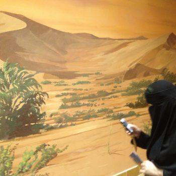 SAUDI ARABIA: MDG 3 Promoting Gender Equality #Moms4MDGs