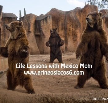 MEXICO: Life Lessons at the Zoo
