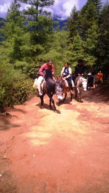 People using ponies