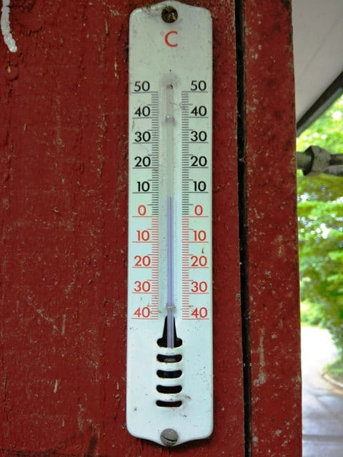 A thermometer at a stall in the path